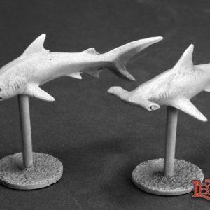 3622 Sharks (2)
