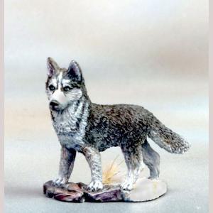 DSM7829 Huskie Dog